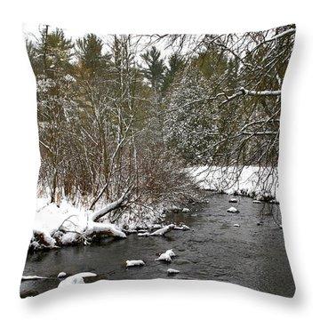 Winter On Bear Creek Throw Pillow