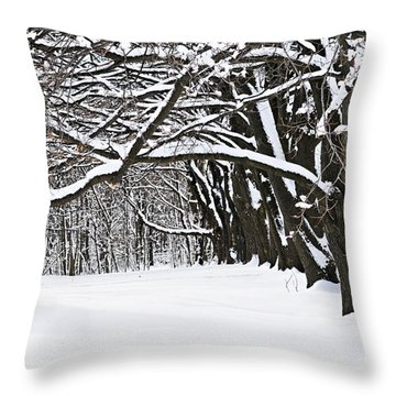 Winter Park With Snow Covered Trees Throw Pillow by Elena Elisseeva