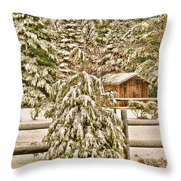 Throw Pillow featuring the photograph Winter Pine by Mary Timman