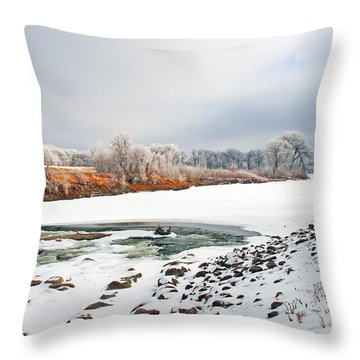 Winter Red River 2012 Throw Pillow