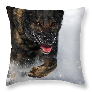Winter Run Throw Pillow by Karol Livote