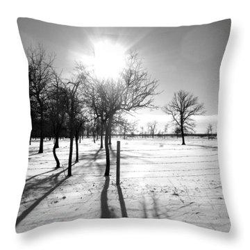 Winter Shadows Throw Pillow by Leanna Lomanski