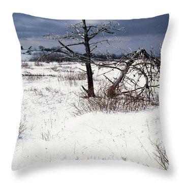Winter Shenandoah National Park Throw Pillow by Thomas R Fletcher