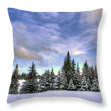Throw Pillow featuring the photograph Winter Sky by Michele Cornelius