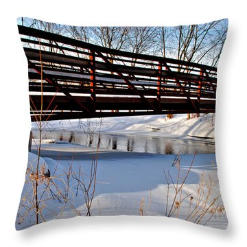 Throw Pillow featuring the photograph Winter Splendor by Janice Adomeit