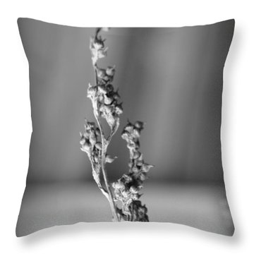 Winter Stem II Throw Pillow