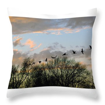 Winter Sunset  Silhouette Throw Pillow by Brian Wallace