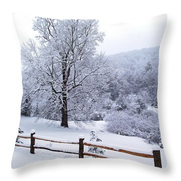 Winter Tree And Fence In The Valley Throw Pillow