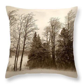 Throw Pillow featuring the photograph Winter Treeline by Hugh Smith