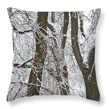 Winter Trees  Throw Pillow by Aimee L Maher Photography and Art Visit ALMGallerydotcom