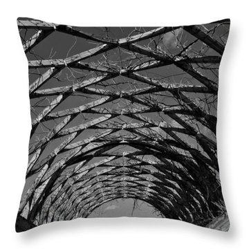 Winter Trellis Throw Pillow