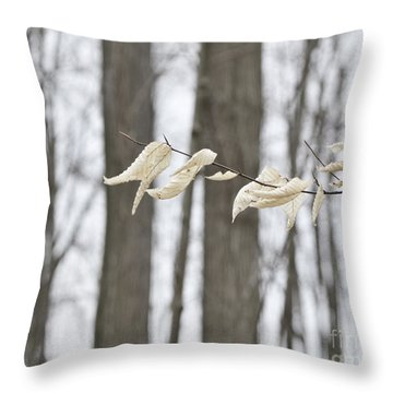 Winter White Throw Pillow