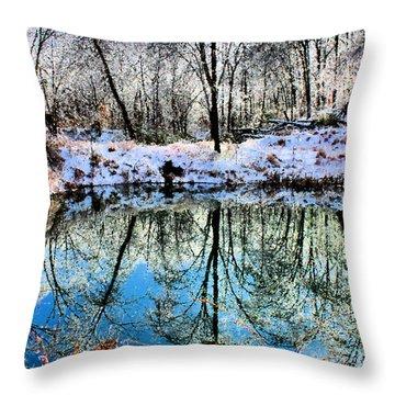 Winter Wonder Throw Pillow by Kristin Elmquist
