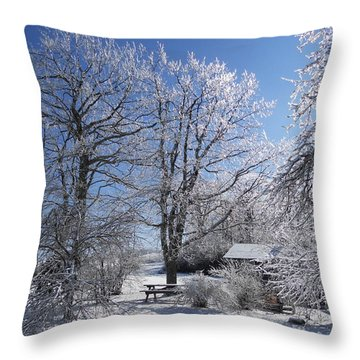 Throw Pillow featuring the photograph Winter Wonderland  by Diannah Lynch
