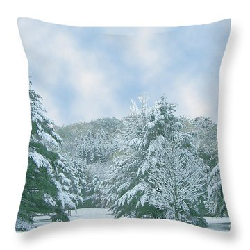 Throw Pillow featuring the photograph Winter Wonderland In The South by Michael Waters