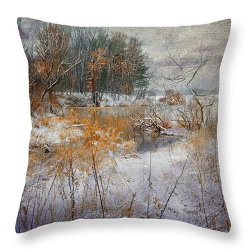 Throw Pillow featuring the photograph Winter Wonderland by Mary Timman
