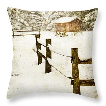 Throw Pillow featuring the digital art Winter's Beauty by Mary Timman