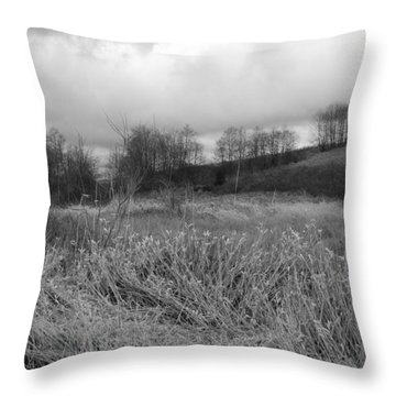 Throw Pillow featuring the photograph Winters Breeze by Kathleen Grace