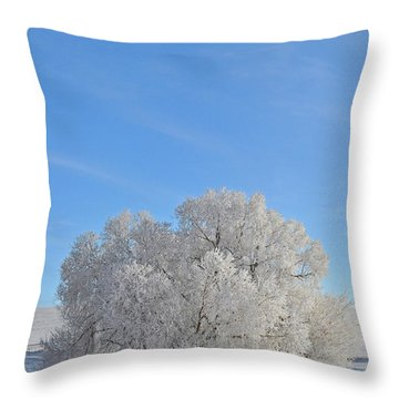 Winter's Coat In Montana's Gallatin Valley Throw Pillow by Bruce Gourley