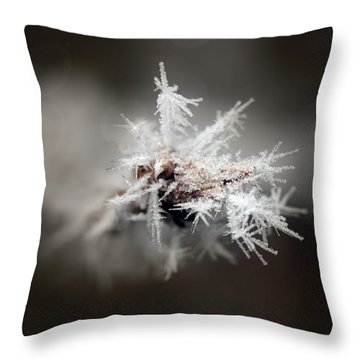 Winters Frost Throw Pillow