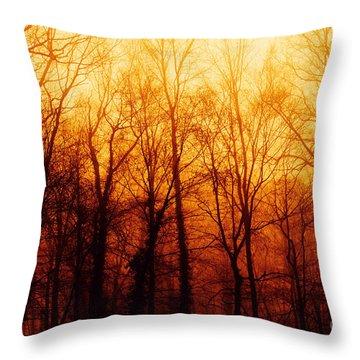 Winters Harvest Throw Pillow