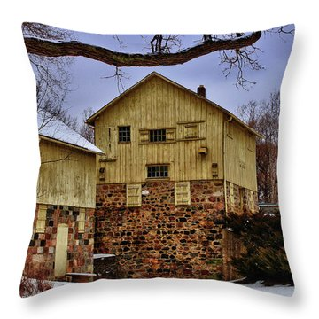 Throw Pillow featuring the photograph Winters Mill by Rachel Cohen