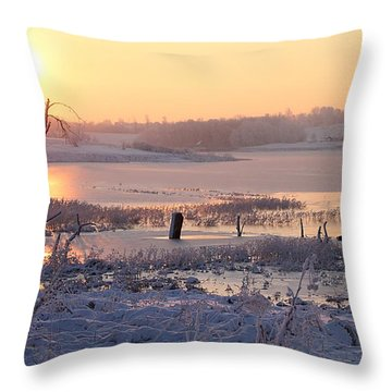 Throw Pillow featuring the photograph Winter's Morning by Elizabeth Winter