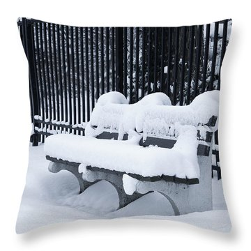 Winter's Quiescence Throw Pillow by Dale Kincaid