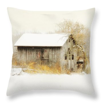 Throw Pillow featuring the photograph Winters Rage by Mary Timman