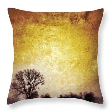 Wintery Road Sunrise Throw Pillow by Jill Battaglia