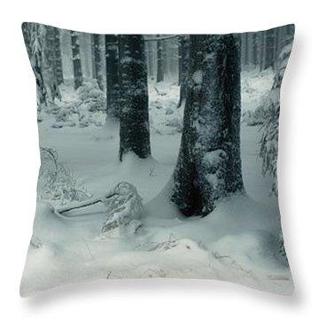 Wintry Fir Forest Throw Pillow by Ulrich Kunst And Bettina Scheidulin