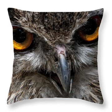 Wise Eyes 2 Throw Pillow by Wade Aiken