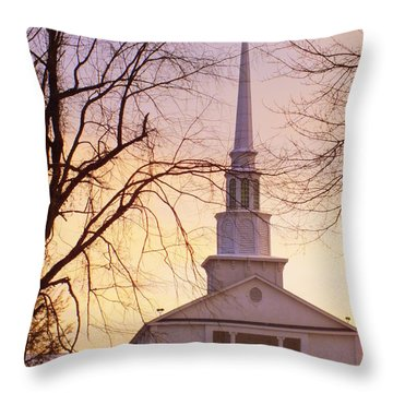 Wish You Were Here Throw Pillow by Karen Wiles