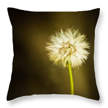 Throw Pillow featuring the photograph Wishes by Sara Frank