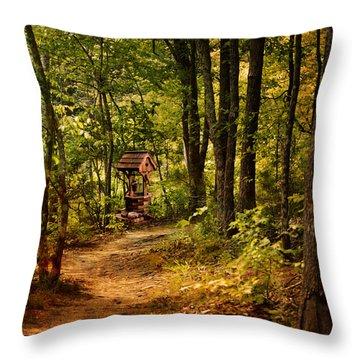 Wishing Path Throw Pillow by Jai Johnson