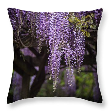 Wisteria Droplets Throw Pillow