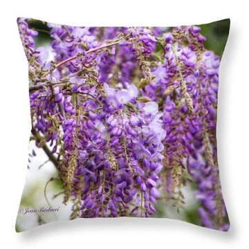 Throw Pillow featuring the photograph Wisteria by Joan Bertucci