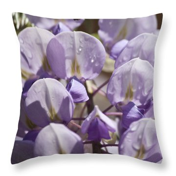 Wisteria Squared 2 Throw Pillow by Teresa Mucha