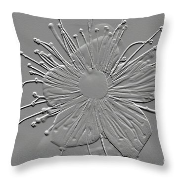 Witch Hazel Blossom Throw Pillow by Donna Bentley