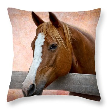 With A Whisper Throw Pillow by Doug Long