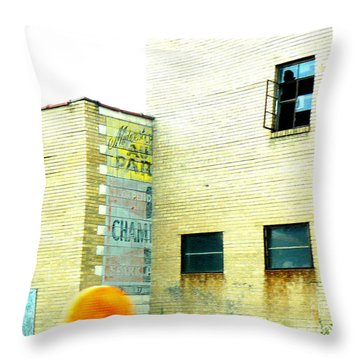 Witness  Throw Pillow by Lin Haring