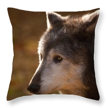 Wolf Outlined By The Sun Throw Pillow by Karol Livote
