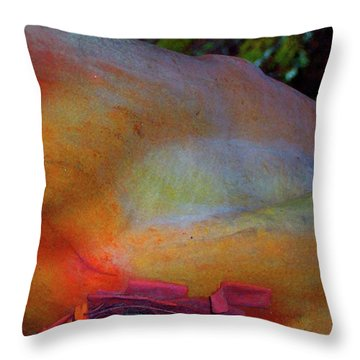 Throw Pillow featuring the digital art Wonder by Richard Laeton