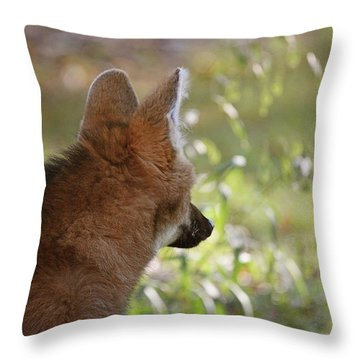 Wondering Wolf Throw Pillow by Karol Livote