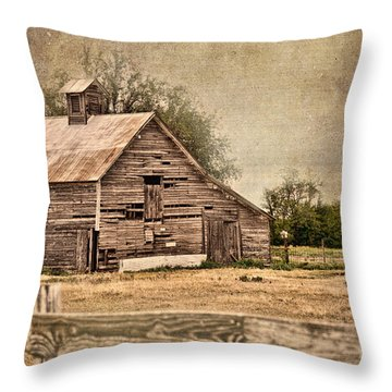 Wood Barn Throw Pillow by Betty LaRue