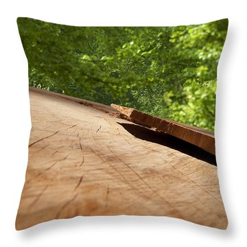 Wood Forest Throw Pillow by Michael Mogensen