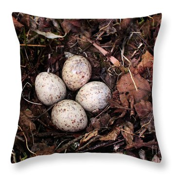 Woodcock Nest And Eggs Throw Pillow by Angie Rea