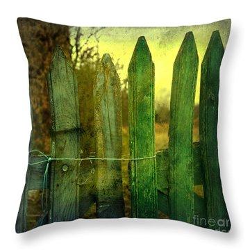 Wooden Barrier Throw Pillow by Bernard Jaubert