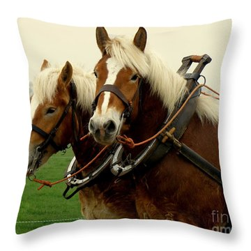 Work Horses Throw Pillow by Lainie Wrightson