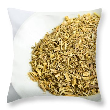 Wormwood Throw Pillow by Photo Researchers